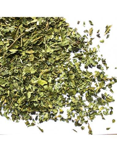 Paw Paw Leaf Tea Organic