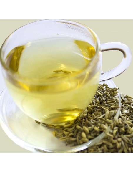 Fennel Seed Tea Organic